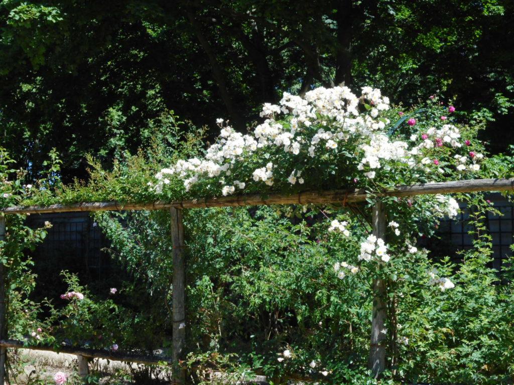 Nét kiêu sa kiểu Pháp ở Vườn hồng Val-de-Marne